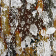 Old wall with paint drippings and splashes - Stock Photo