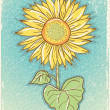 Sunflower .Vector vintage postcard with grunge elements — Stok Vektör