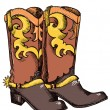 Cowboy boots .Vector graphic image — Stock Vector #5786221