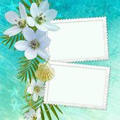 Letní pozdrav card — Stock fotografie