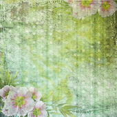 Grunge papers design in scrap-booking style — Stock Photo