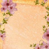 Plano de fundo para o cartão de felicitações — Foto Stock
