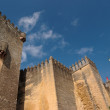 Almodovar Del Rio medieval castle in Spain — Stock Photo