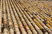 Texture of old roof tiled with cylindrical tiles — Stock Photo