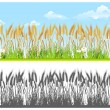 Stock Vector: Landscape with wheat