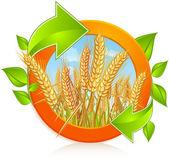 Círculo con trigo maduro — Vector de stock