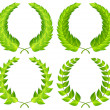 Green laurel wreaths — Stock Vector