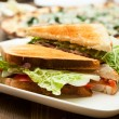 A plate with the sandwich — Stock Photo