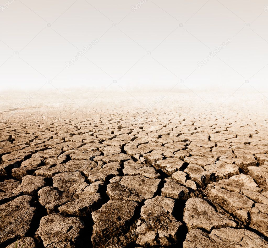 land with dry cracked ground — Stock Photo #5813397