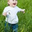 A little smiling boy in the field — Stock Photo