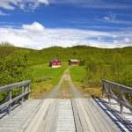 Norwegian farm — Stock Photo