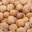 Walnut — Stock Photo #6250114