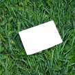 Note blank on green grass — Stock Photo