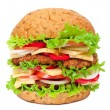 Big hamburger — Stock Photo #6250433