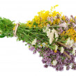 Herbal medicine — Stock Photo #6250572