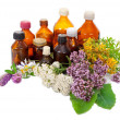 herbal medicine&quot — Stock Photo #6250586