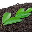 Black tea with leafs — Stock Photo