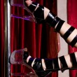 Legs of stripper — Stock Photo #5883946