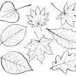 Set of leaves — Vector de stock #6644163