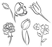 Flower art line — Vector de stock