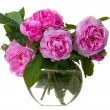Pink roses bouquet — Stock Photo #5776054
