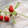 Wild strawberry branch — Stock Photo #6010971