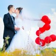 Foto Stock: Beautiful bride and groom