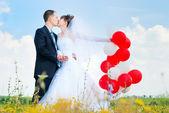 美丽的新娘和新郎 — 图库照片