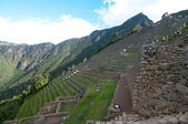 Grass terraces at Machu Picchu — Stock Photo