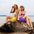 Stock Photo: Girls on the log