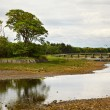 Wick River - Foto Stock