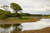 Knot řeka — Stock fotografie