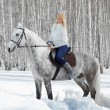 Beautiful girl with horse — Stock Photo #5674611