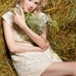 Country girl on hay — Stock Photo #5714534