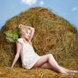 Country girl on hay — Stock Photo #5715028