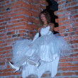 Bride on the wall — Stock Photo #6734380