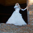 Bride on the wall — Stock Photo