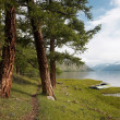 Path near lake — Stock Photo