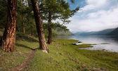 Yol yakın göl — Stok fotoğraf