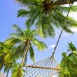Stock Photo: Hammock