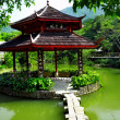 Chinese pond — Stock Photo #5631731