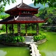 Chinese pond - Stock Photo