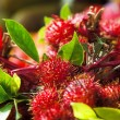 Rambutans - Photo