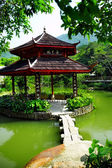 Chinese pond — Stock Photo