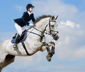 Equestrian jumper — Photo