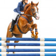 Equestrian sport - show jumping — Stock Photo
