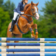 Equestrian sport - show jumping - Stock Photo