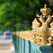 Stock Photo: Details of Russicity of St Petersburg