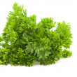 Curly parsley — Stock Photo #6051523