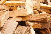 Chopped down the wood — Stock Photo